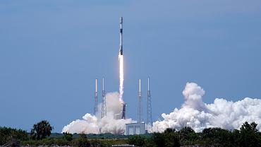 Kosmiczna Arka Elona Muska. Zabierze w kosmos najbardziej odporne zwierzęta na Ziemi