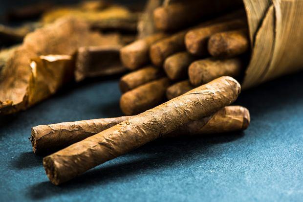 Zapalić cygaro