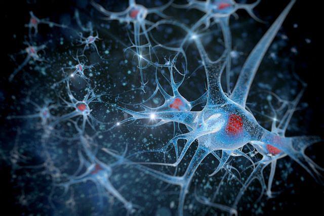 Zmiany w korzeniach nerwowych najczęsciej pojawiają się u osób m.in. z kiłą układu nerwowego lub gruźlicą kręgosłupa