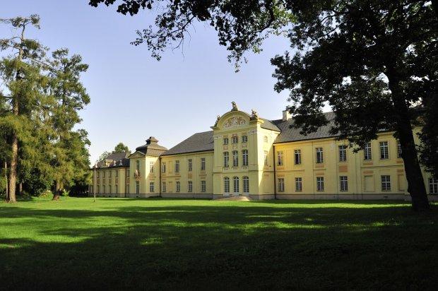 Pałac Potockich (Lubelskie/Radzyń Podlaski)