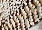 Potężny cios w firmy tytoniowe. Ponad milion palaczy może dostać odszkodowanie