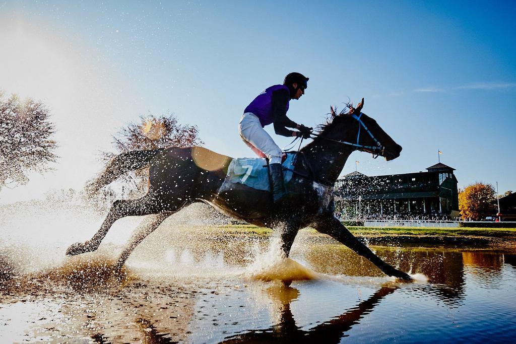Zakończenie sezonu wyścigów konnych na Partynicach