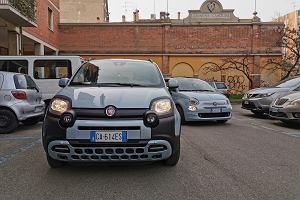 Opinie Moto.pl: Fiat 500 i Fiat Panda Hybrid. Miękkie lądowanie w nowej erze