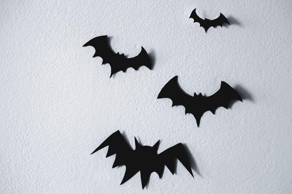 Dekoracje Na Halloween Jak Zrobic Podpowiadamy