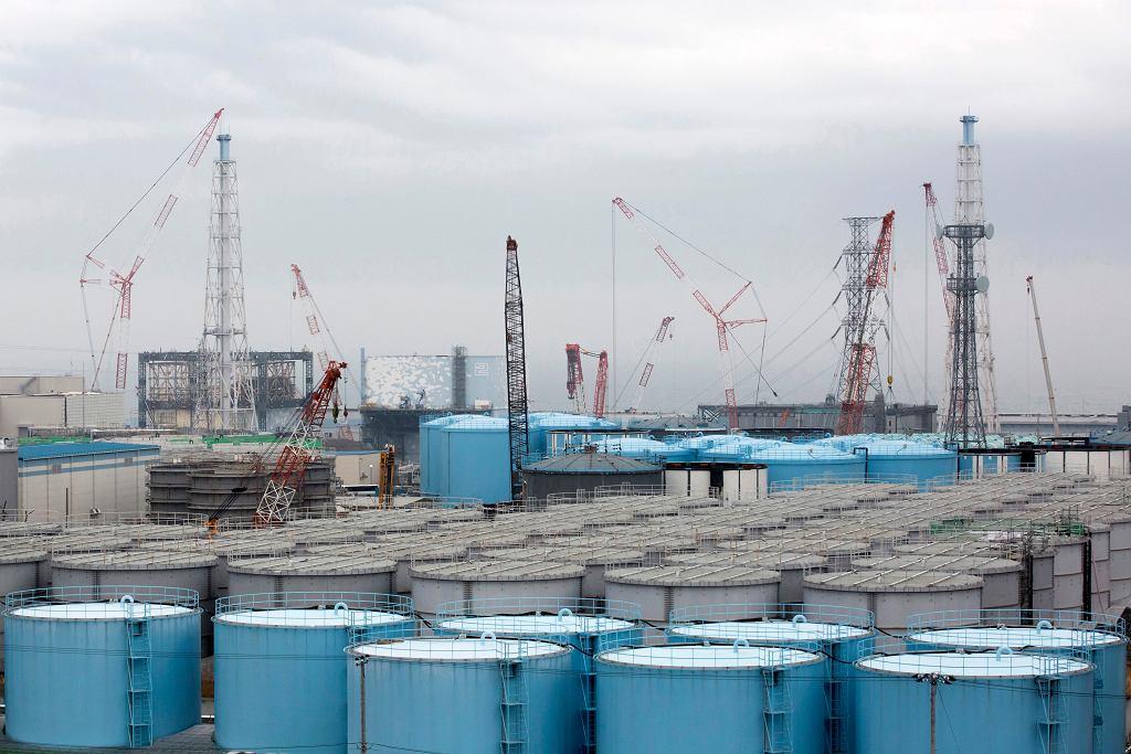 Japan Nuclear