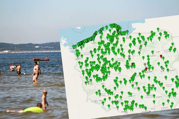 Sinice znów pojawiły się w Bałtyku. Mapa pokazuje, gdzie jest bezpiecznie, a gdzie nie można się kąpać