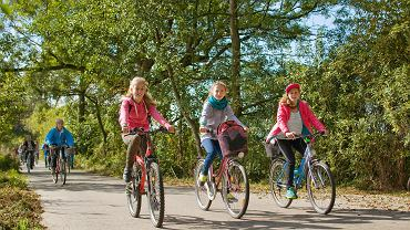 Dolina Baryczy ma ogromny potencjał turystyczny. Te okolice najlepiej zwiedzać na rowerze