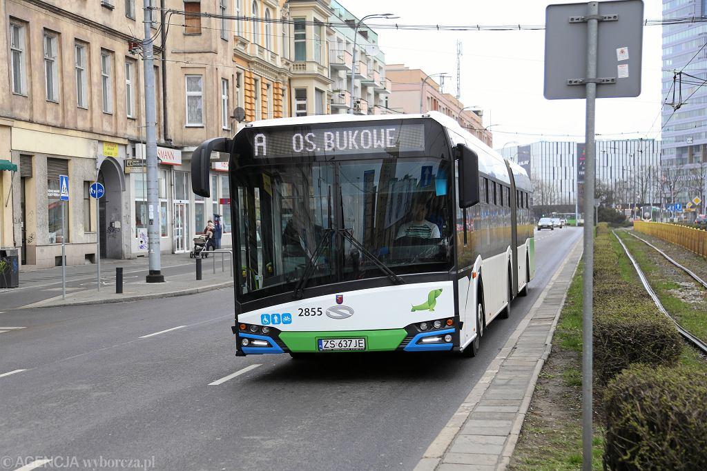 Autobus miejski w Szczecinie (zdjęcie ilustracyjne)