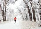 7 zachwycających widoków podczas biegania zimą z Instagramu [GALERIA]