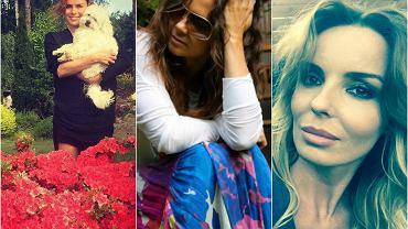 Gdy przejrzymy profile na Instagramie czy na Facebooku gwiazd, okaże się, że wiele z nich nad miejski gwar przekłada odpoczynek we własnym ogrodzie, a najlepszym sposobem na relaks jest zasadzenie kwiatów. Zobaczcie, jak wyglądają ich ogrody.