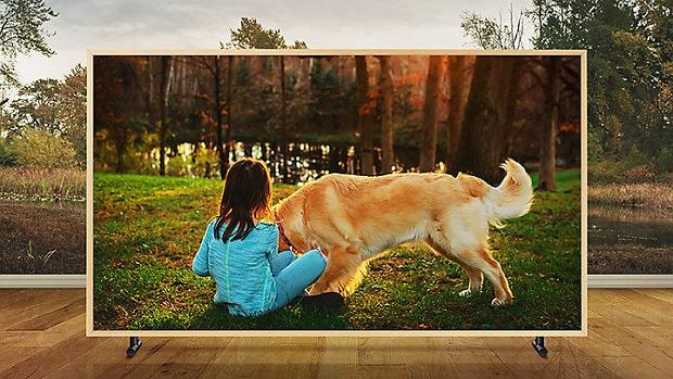 Samsung Frame UE55LS003AUXXH