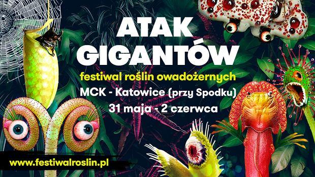 Atak gigantów - festiwal roślin owadożernych