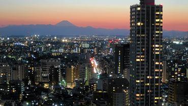 Tokio. Widok na miasto i górę Fuji