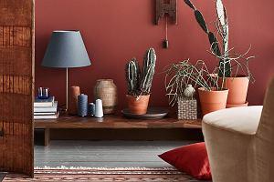 Kolor ceglany i terracotta. To hity lata 2020 dla każdego domu i stylu
