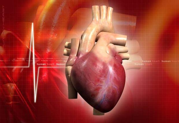 Wrodzone wady serca
