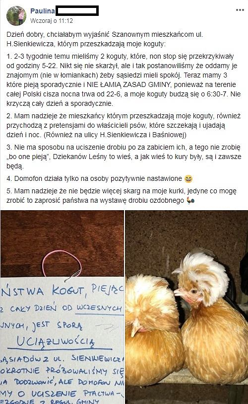 Kłótnia o koguty w Łomiankach. 'Prosimy o uciszenie ptactwa! To niezgodne z regulaminem'