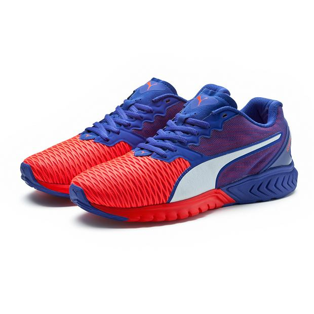 Buty do biegania Puma IGNITE Dual