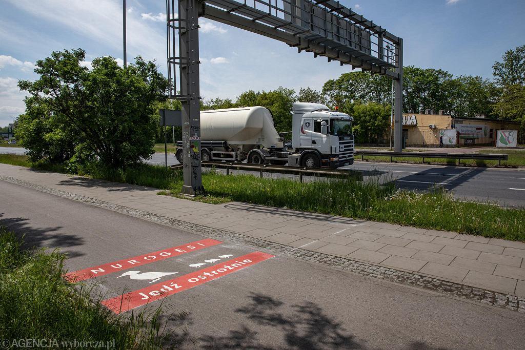 Oznakowanie chroniące nurogęsi na ścieżce rowerowej na ul. Czerniakowskiej