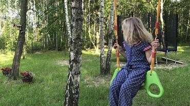 Otoczenie przedszkola 'Magia lasu'