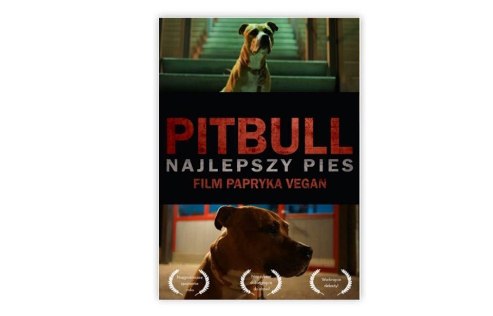 Plakat Pitbull.