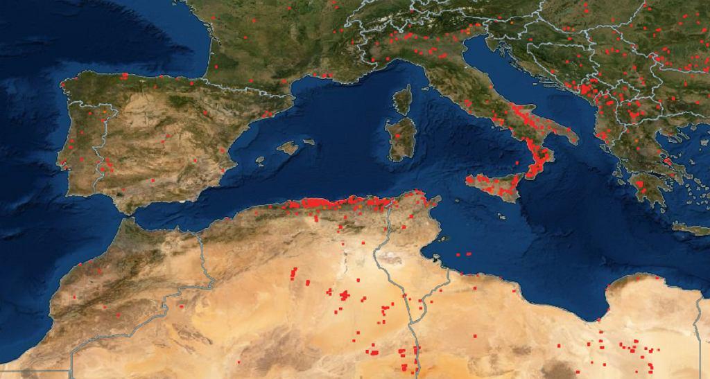 Pożary na południu Europy i w Afryce Północnej, w tym w Algierii, na mapie zaznaczone czerwonymi punktami - dane za 24 godziny do 7:00 11 sierpnia 2021.