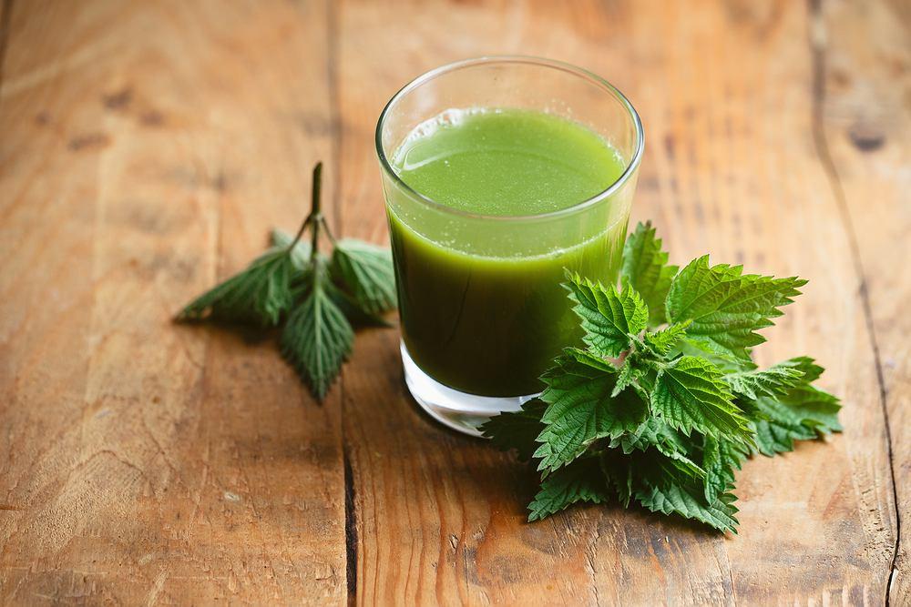 Sok z pokrzywy jest ceniony ze względu na wysoką zawartość wielu cennych dla zdrowia składników odżywczych