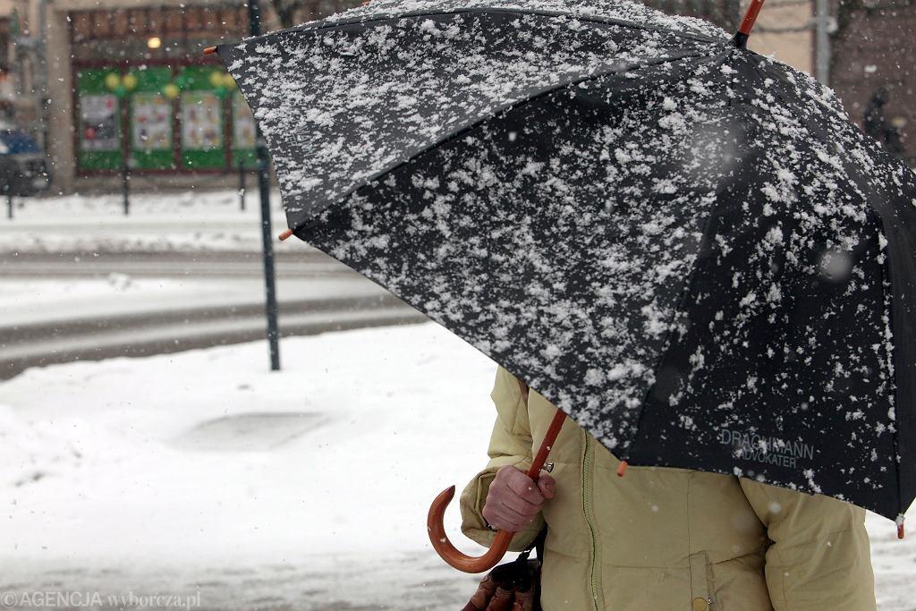 Pogoda. Zamieć śnieżna