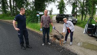 Rytel. Wierny pies uratował właściciela, który wpadł w bagno