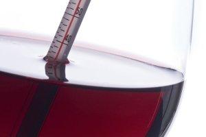 Degustacje win prędkości randki wydarzenia