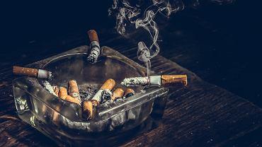 Nikotyna jest substancją szkodliwą dla organizmu, a przez wiele osób uważana jest wręcz za legalny narkotyk.