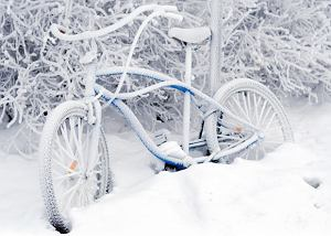 rowery,zima