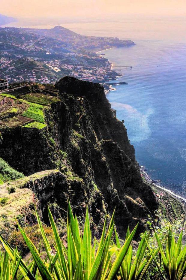 Kuchnia Madery: tradycja i plastik