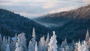 Tatry, polska, góry, zima