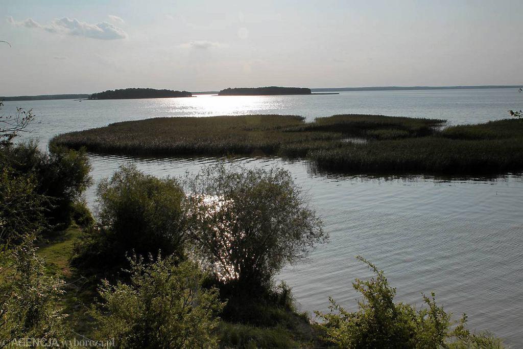 Widok na Jezioro Śniardwy z wysokiego brzegu wyspy Szeroki Ostrów