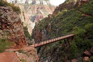 Dzika Ameryka: safari w Wielkim Kanionie