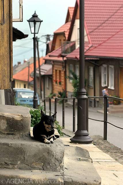 Polska Południowa, zabytkowa architektura Lanckorony. Lanckorona, nieduża wieś w pobliżu Wadowic, słynie z zabytkowej architektury otaczającej rynek. Historyczną zabudowę osady tworzą głównie drewniane domy, które zachowały oryginalny XIX-wieczny charakter.