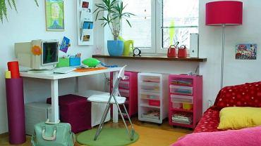 W pokoju ucznia roślina stojąca na parapecie powinna być tak dobrana, żeby nie zabierała zbyt dużo światła.