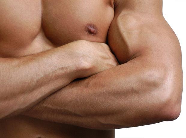 Mięśnie z proszku