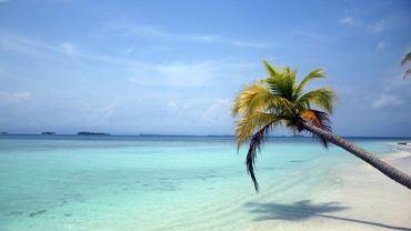 Wyspy Perłowe położone w Zatoce Panamskiej to archipelag ponad 100 wysp, często niezamieszkanych. Idealne miejsce, aby odpocząć od hałasu i cywilizacji