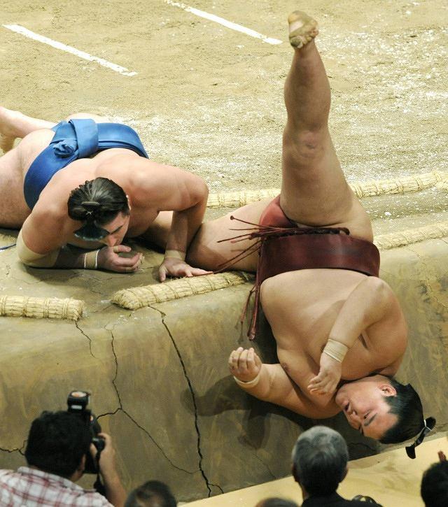 Jak wygląda zapaśnik sumo do góry nogami
