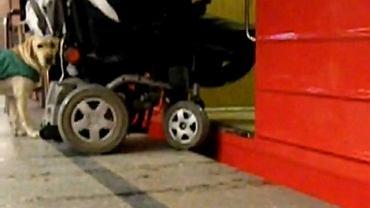 Kadr z filmu Szalonego Wózkowicza
