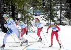 Wiceminister sportu: Trzeba mieć odwagę powiedzieć 'nie jedziecie na igrzyska