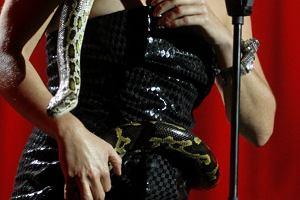 Ta charakteryzacja zadziwiła wszystkich na Smooth Jazz Festiwal. Maria Peszek wystąpiła ze swoim wężem Henrykiem.