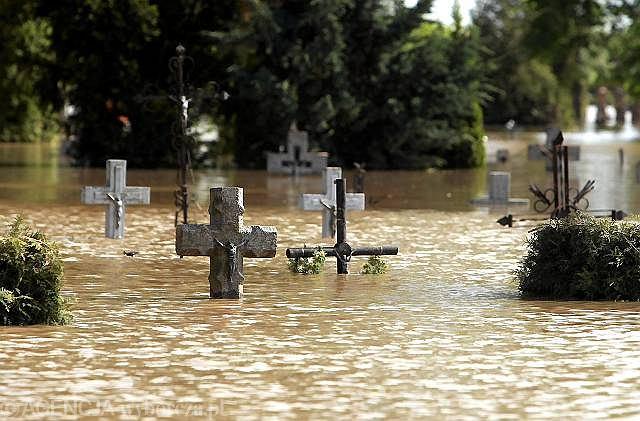 Wilków, cmentarz parafialny zalany przez Wisłę