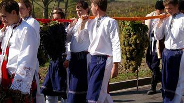Winobranie we Valticach