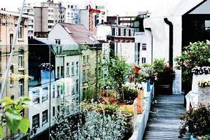Antwerpia IN: zwiedzaj Antwerpię z INnym przewodnikiem: Het Eilandje