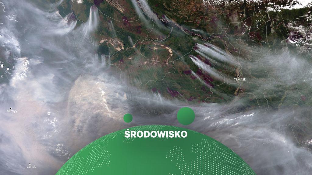 Dym z pożarów na Syberii widziany z satelity, zdjęcie z 27 lipca 2021 r.