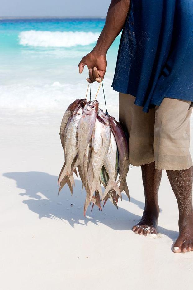 Ryby są jednym z głównych składników kuchni Zanzibaru / fot. Shutterstock