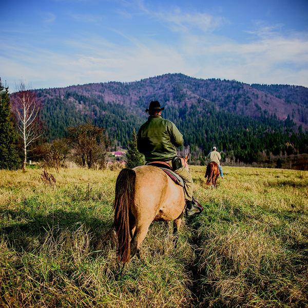 Czy warto pojechać na konie, nie mając o tym zielonego pojęcia? Zdecydowanie nie. Ja zaufałem mistrzowi i sympatycznej klaczy.