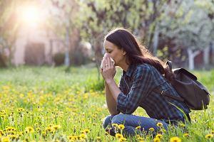 Co pyli w kwietniu? Sprawdź kalendarz alergika. Pylenie drzew, roślin, krzewów